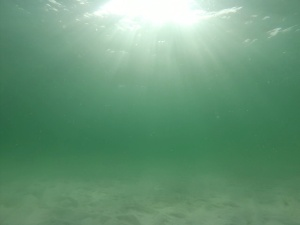 Clearer water further away from the beach...Photo by Hubby