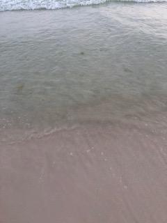 The June Grass Report | Crowdsourced June Grass and Beach Updates
